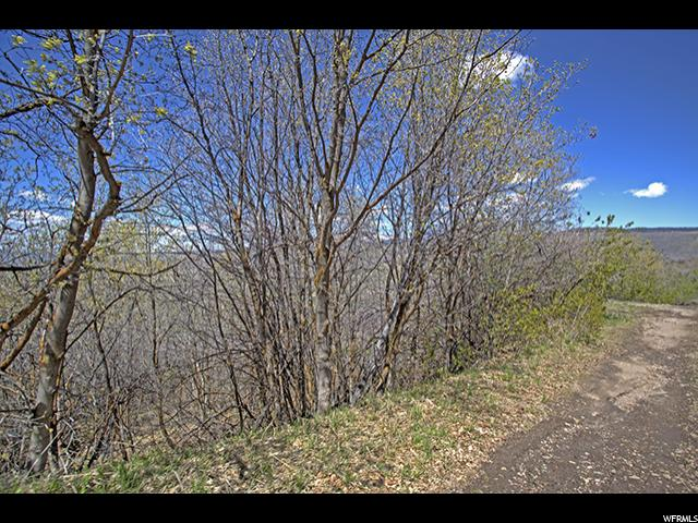Additional photo for property listing at 4805 S MORAINE Drive  Kamas, 犹他州 84036 美国