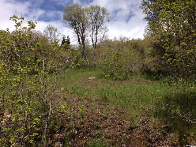 Land for Sale at 107 N E. UPPER OAKWOOD Drive 107 N E. UPPER OAKWOOD Drive Springville, Utah 84663 United States