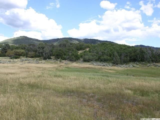 9533 E MEADOW VIEW DR Indianola, UT 84629 - MLS #: 1381505