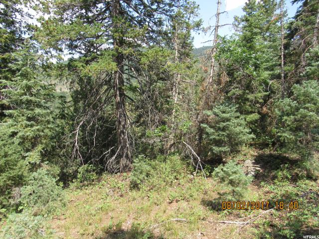 Additional photo for property listing at 58 TIMBER RIDGE 58 TIMBER RIDGE Mount Pleasant, Utah 84647 États-Unis
