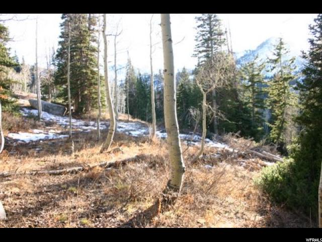 Land for Sale at 8039 GRAND Avenue Brighton, Utah 84121 United States