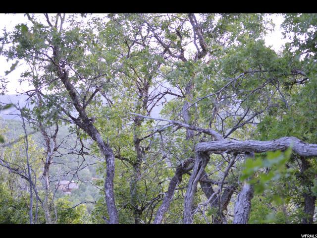 26 N E. SPRING MOUNTAIN DR Springville, UT 84663 - MLS #: 1384344
