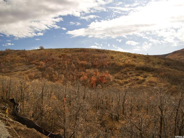 Additional photo for property listing at 5306 E OLD OAK Road  Emigration Canyon, Utah 84108 United States