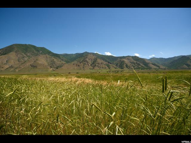 Pine Canyon, UT 84074 - MLS #: 1385751