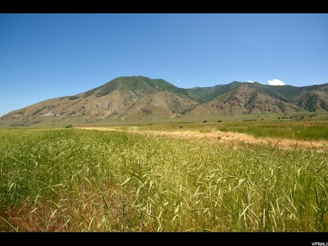 Pine Canyon, UT 84074 - MLS #: 1385753