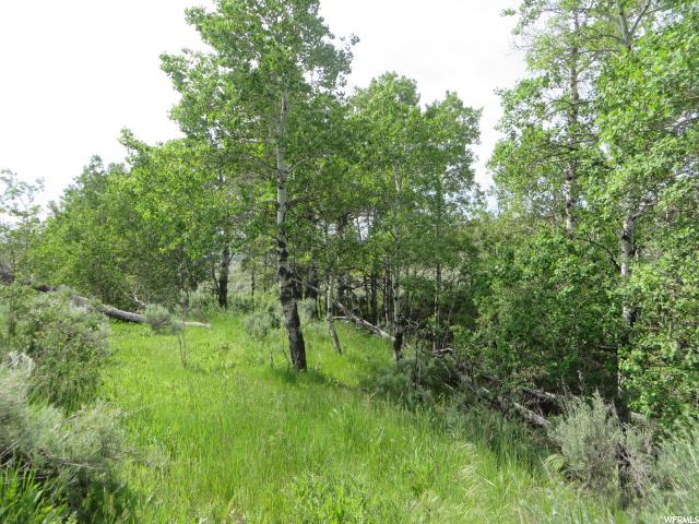 Additional photo for property listing at 35 SAGE HOLLOW Road  Kamas, Utah 84036 United States