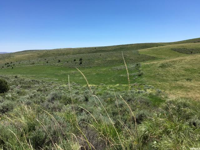 40 ACRES CEMETARY RD Montpelier, ID 83254 - MLS #: 1386400