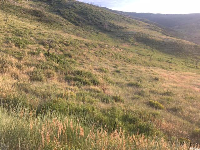 18 HOLLOW Wanship, UT 84017 - MLS #: 1386565