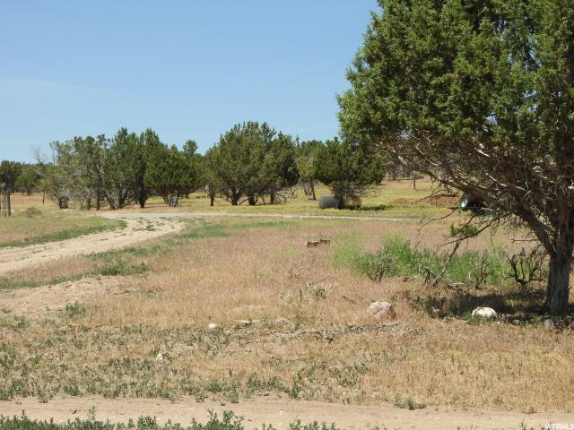 Additional photo for property listing at 300 E 400 N  Fountain Green, Utah 84632 États-Unis