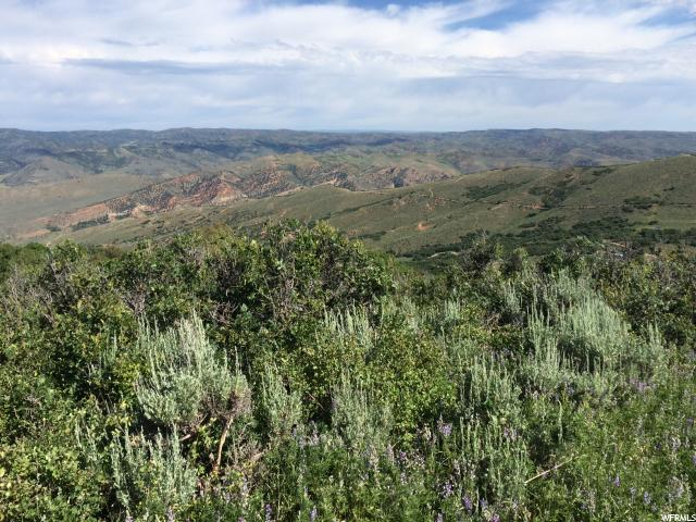 Land for Sale at 52 S GRASSCREEK Road Echo, Utah 84024 United States
