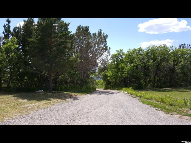 25850 N CLEMENTS LN Fairview, UT 84629 - MLS #: 1390804