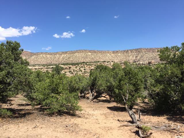Additional photo for property listing at Address Not Available  Neola, Utah 84053 États-Unis