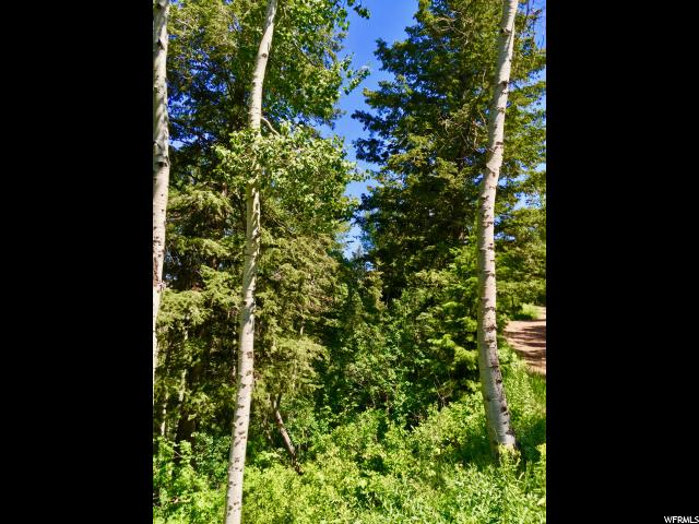 136 S PINE MEADOWS DR Wanship, UT 84017 - MLS #: 1393831