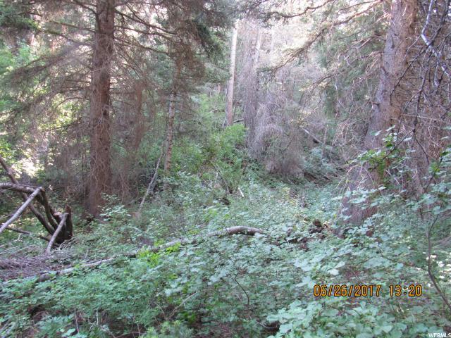 85 WHISPERING PINES 2 Mount Pleasant, UT 84647 - MLS #: 1393872