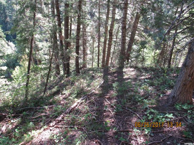 Land for Sale at 87 WHISPERING PINES 2 87 WHISPERING PINES 2 Mount Pleasant, Utah 84647 United States