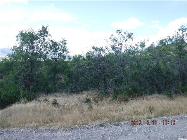 Land for Sale at 12805 E CEDAR RIDGE Drive Fairview, Utah 84629 United States