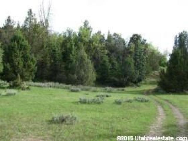 Land for Sale at 15000 N 13000 E Mount Pleasant, Utah 84647 United States