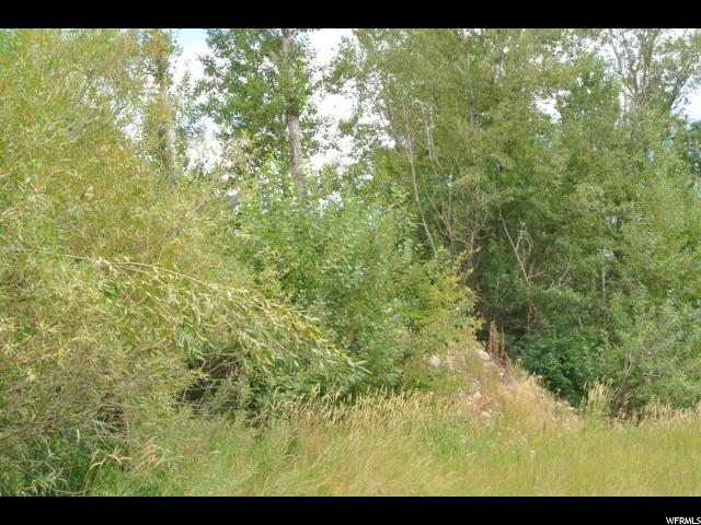 454 PARIS CANYON RD Paris, ID 83261 - MLS #: 1400794