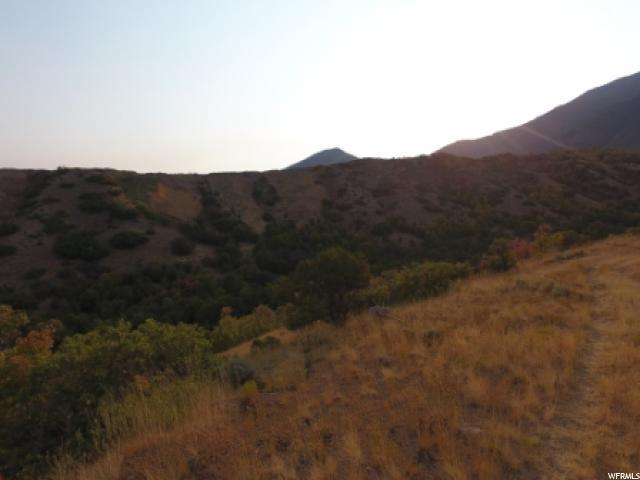 12600 S LOAFER CYN Elk Ridge, UT 84651 - MLS #: 1402021