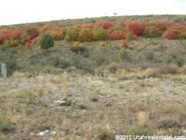 934 W CISCO RUN Garden City, UT 84028 - MLS #: 1402397