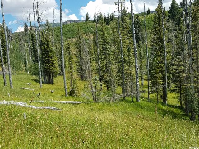Land for Sale at 41 Duck Creek Village, Utah 84762 United States