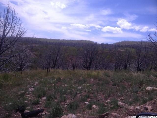 Additional photo for property listing at 10 INDIAN Ridge 10 INDIAN Ridge Indianola, Utah 84629 États-Unis