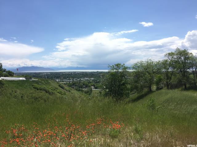 Additional photo for property listing at 5070 N CANYON Road 5070 N CANYON Road Provo, Utah 84601 United States