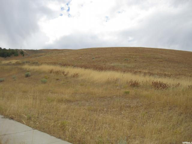 668 E OAKRIDGE Tooele, UT 84074 - MLS #: 1404517