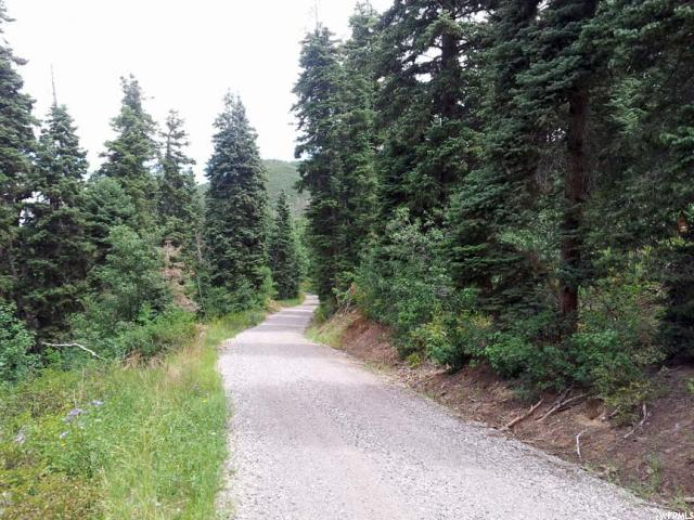 1251 E NORTH FORK RD Fairview, UT 84629 - MLS #: 1405156