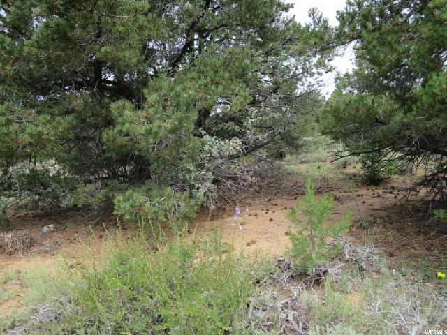 Land for Sale at 4685 N NAVAJO Street Boulder, Utah 84716 United States