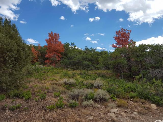 60 S ELK SPRINGS RD Fairview, UT 84629 - MLS #: 1405677
