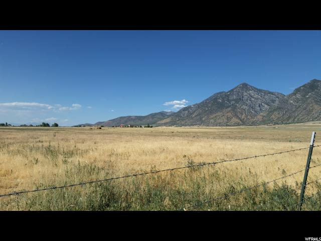 Farm / Ranch / Plantation for Rent at 723 OLD HWY 91 Mona, Utah 84645 United States