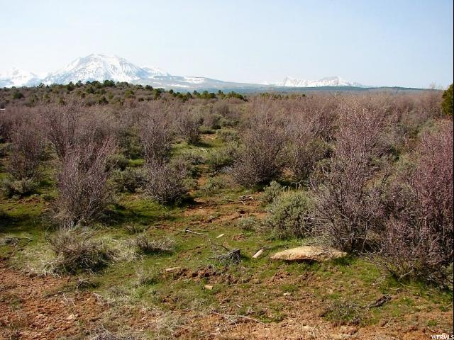33 E MOUNTAIN SHADOW DR La Sal, UT 84530 - MLS #: 1406849