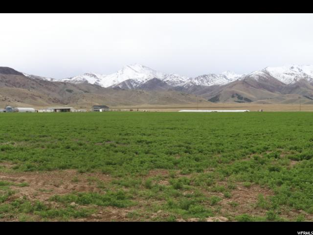 7725 N HIGHWAY 125 Leamington, UT 84638 - MLS #: 1407049