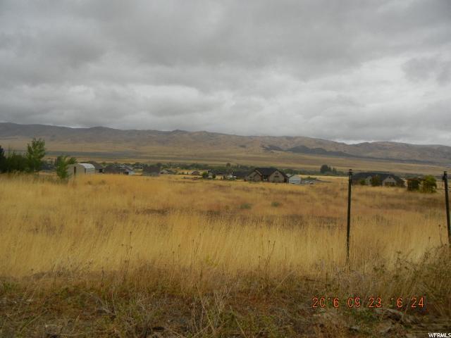 土地 为 销售 在 1416 S OLD HIGHWAY 91 Mona, 犹他州 84645 美国