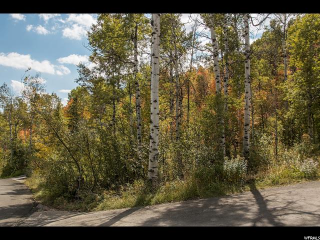4541 W HIDDEN COVE RD Park City, UT 84098 - MLS #: 1407386