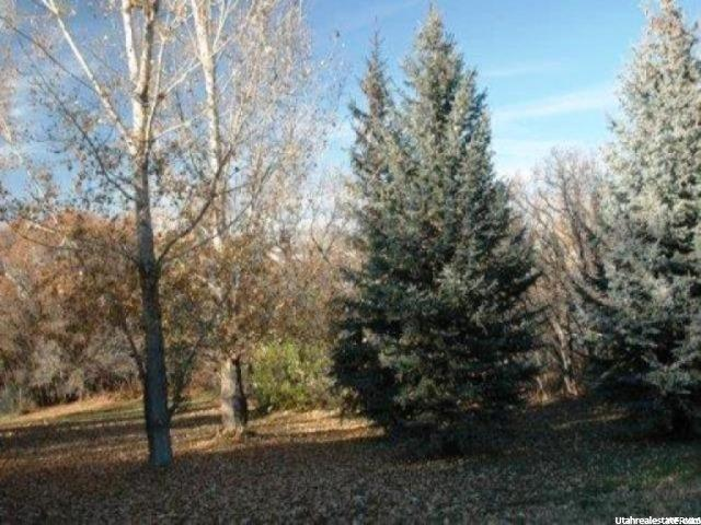 Additional photo for property listing at 1135 E 5250 S 1135 E 5250 S South Ogden, 犹他州 84403 美国