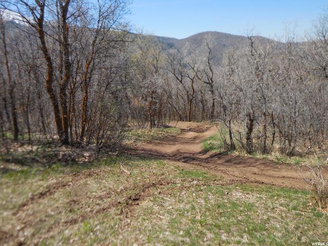 390 E 1200 Elk Ridge, UT 84651 - MLS #: 1407634