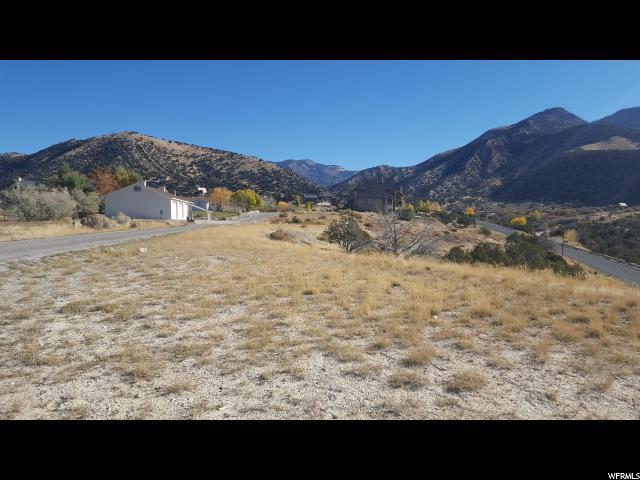 土地 为 销售 在 800 S PALISADE Road Sterling, 犹他州 84665 美国