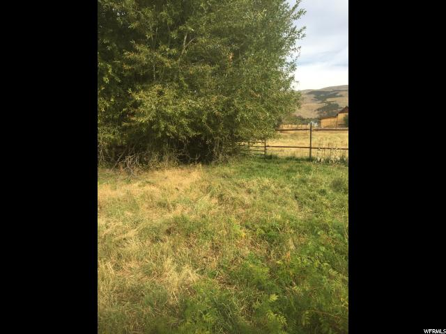 7031 N DRY FORK SETTLEMENT RD Vernal, UT 84078 - MLS #: 1408519