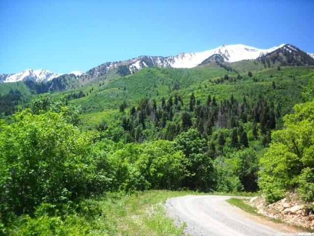 78 N OAK WOOD DR Springville, UT 84663 - MLS #: 1410224