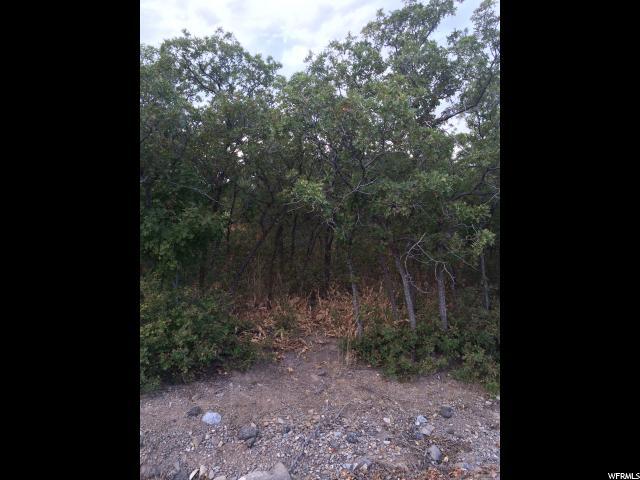 435 S OAK DR Woodland Hills, UT 84653 - MLS #: 1410435