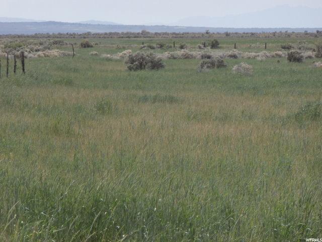 Land for Sale at 5600 N CEDAR MTN Road Holden, Utah 84636 United States