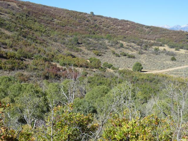 1747 BEAVER BENCH RD Heber City, UT 84032 - MLS #: 1411604