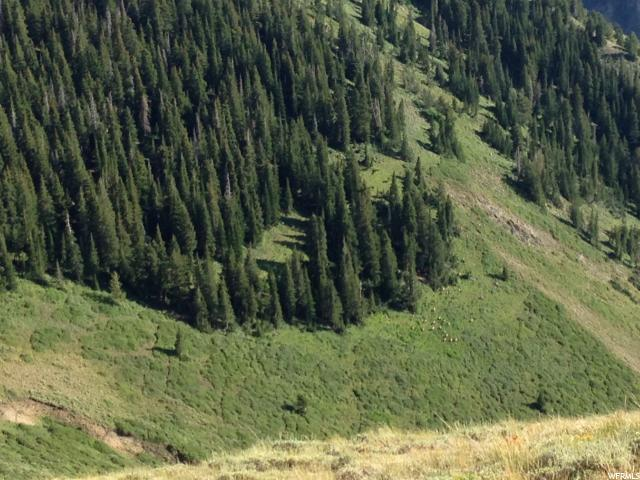 Eagle Mountain, UT 84005 - MLS #: 1411638