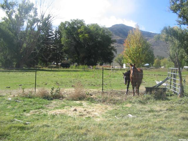 Junction, UT 84740 - MLS #: 1411930