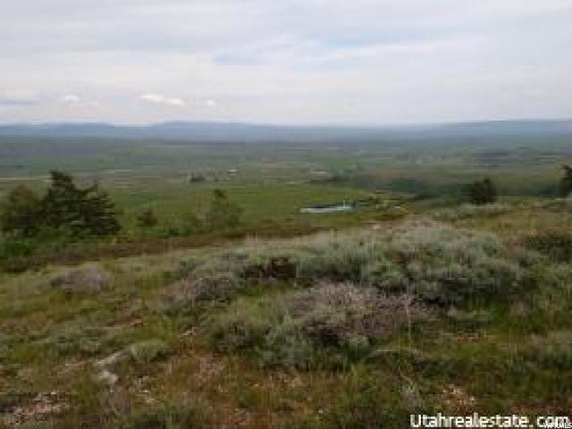 Farm / Ranch / Plantation for Rent at 1489 OLD MILL Road Montpelier, Idaho 83254 United States