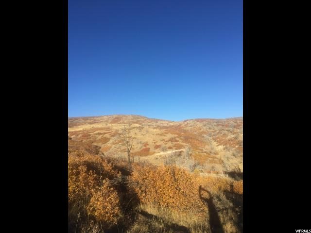 56 BIG HOLLOW Fairview, UT 84629 - MLS #: 1412354