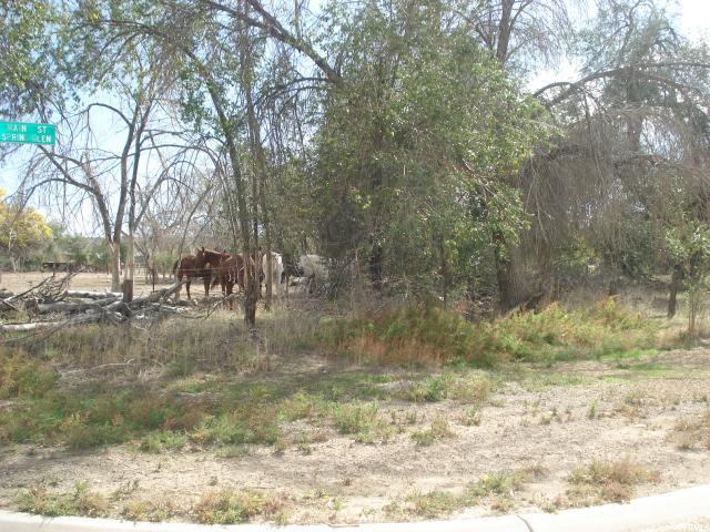 Land for Sale at 4300 N 2000 W Spring Glen, Utah 84526 United States