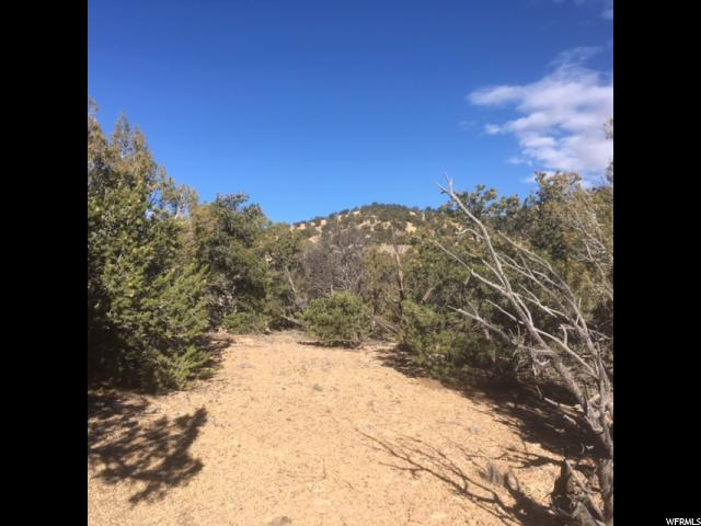 Additional photo for property listing at 4 CEDAR MOUNTAIN 7-5 MTN 4 CEDAR MOUNTAIN 7-5 MTN Fruitland, Utah 84027 United States